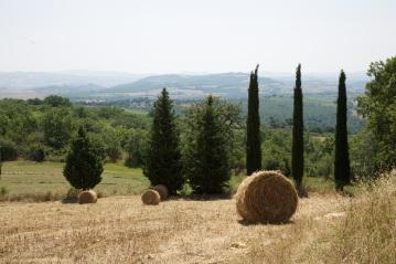 Photos taken in July around Podere Novo near Scansano, Maremma in Tuscany